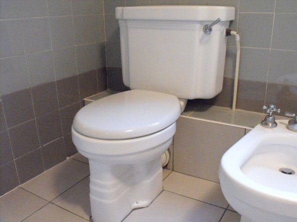 Art Deco toilet and bidet resurfaced to white